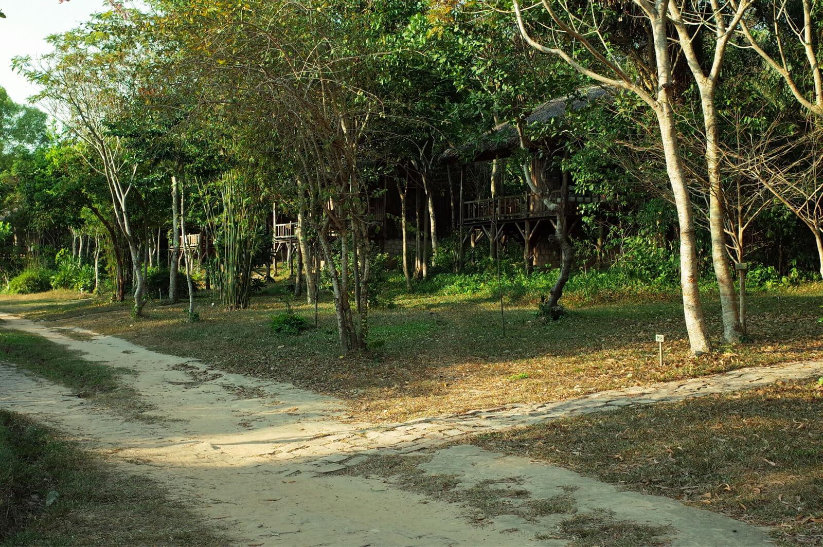 マンゴーベイ リゾート 敷地内