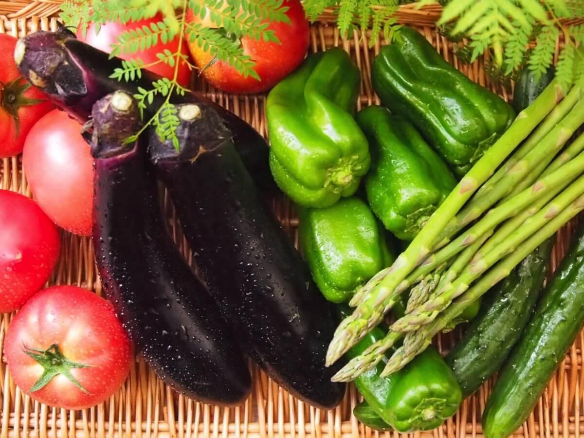 6月が旬の食材 野菜編/夏野菜の季節がやってきた!旬が終える食材を食べ逃すな