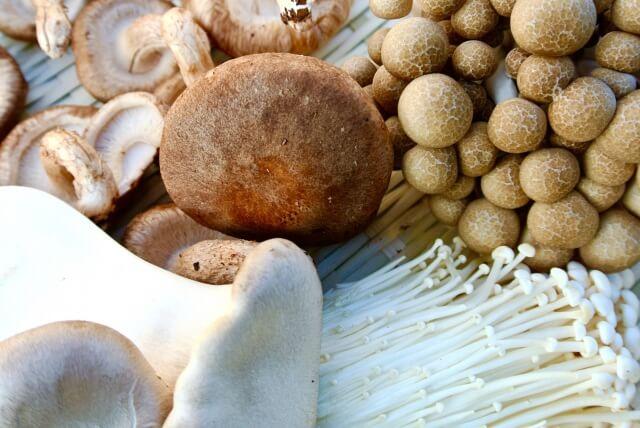 11月が旬の食材 野菜編 〜 鍋の美味しい季節がやってきた!根菜類やキノコ類をしっかり食べよう