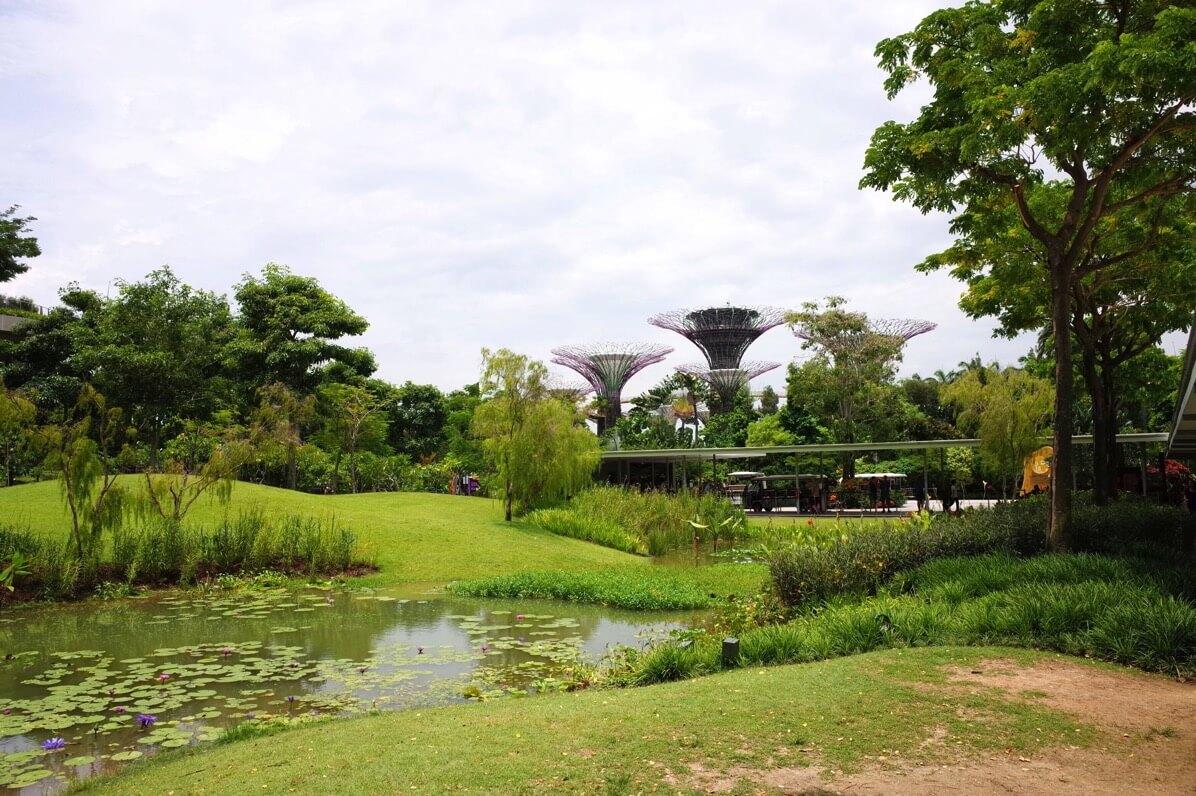 シンガポール【ガーデンズ・バイ・ザ・ベイ】楽しみ方・割引クーポン・行き方・料金まとめ