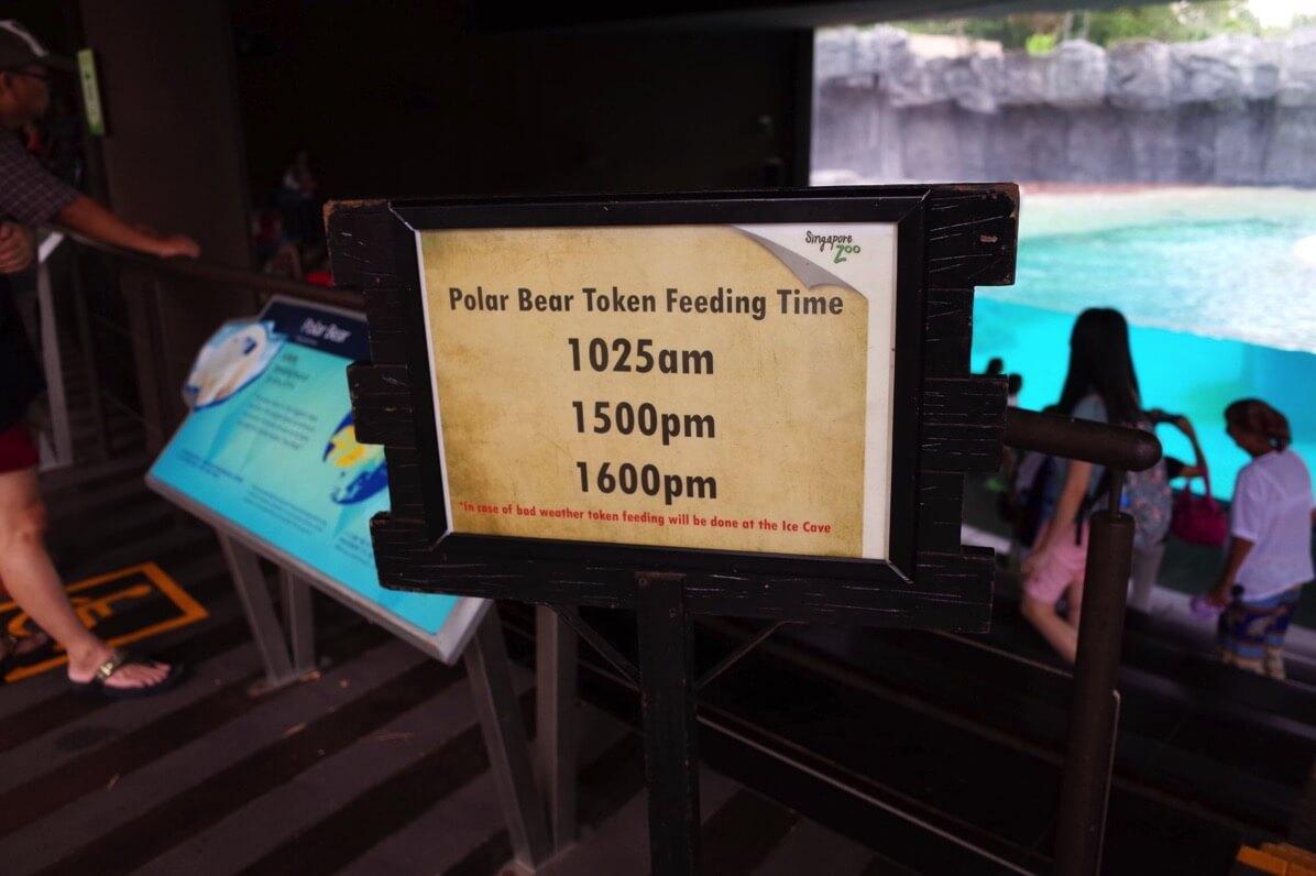 シンガポール動物園 エサやり時間