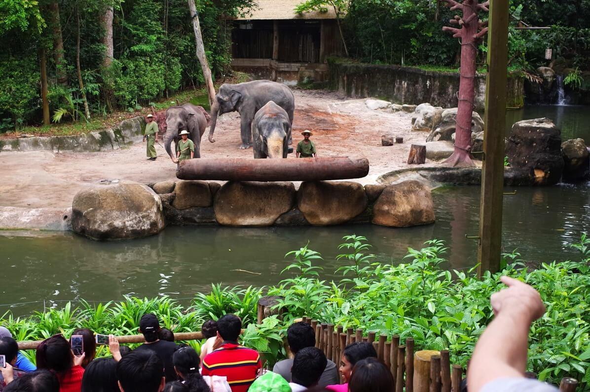 シンガポール動物園 ショー