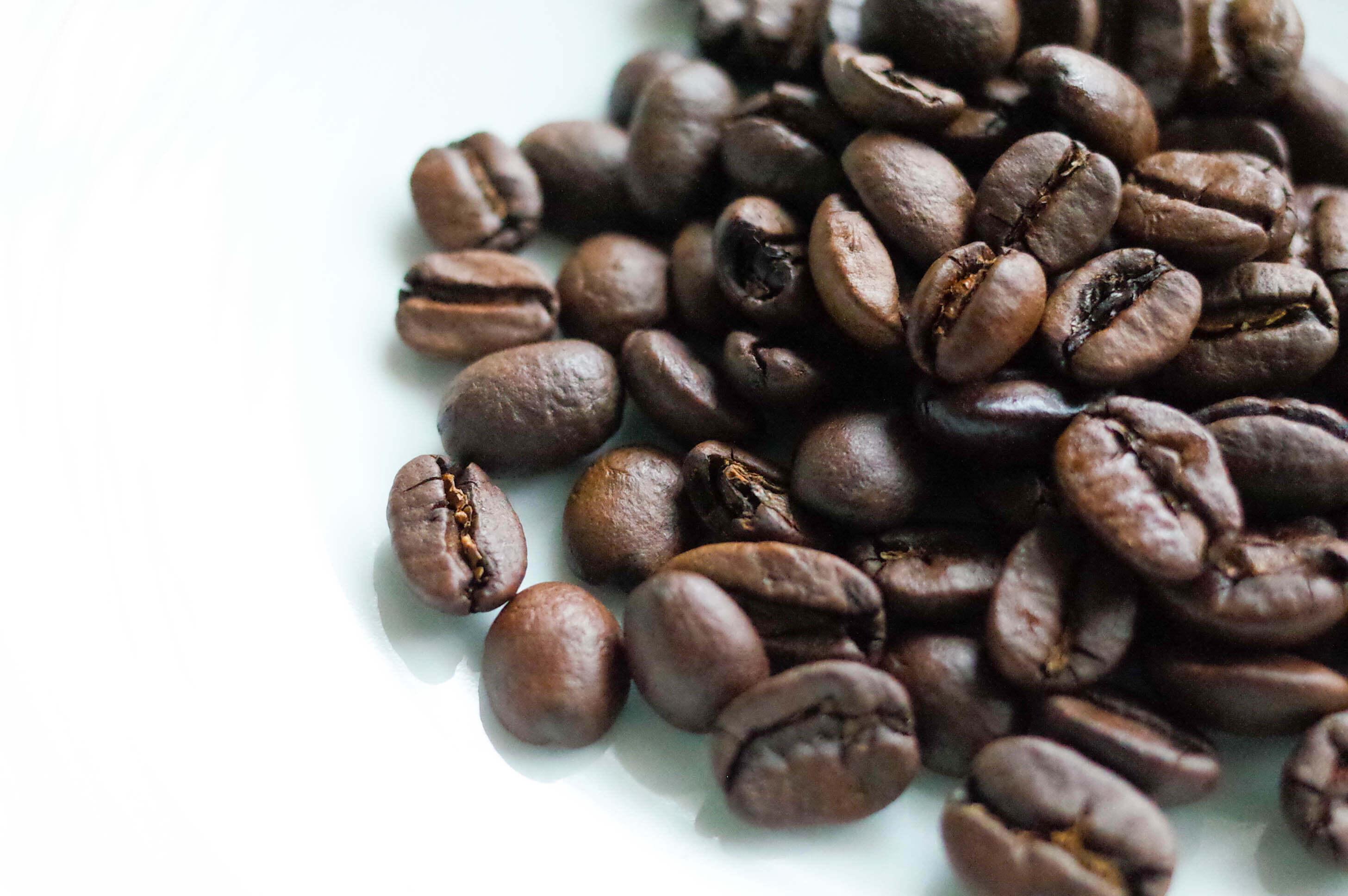 「八月の犬」1g=2円のブラジルコーヒー豆は新鮮でしっかりと膨らみます