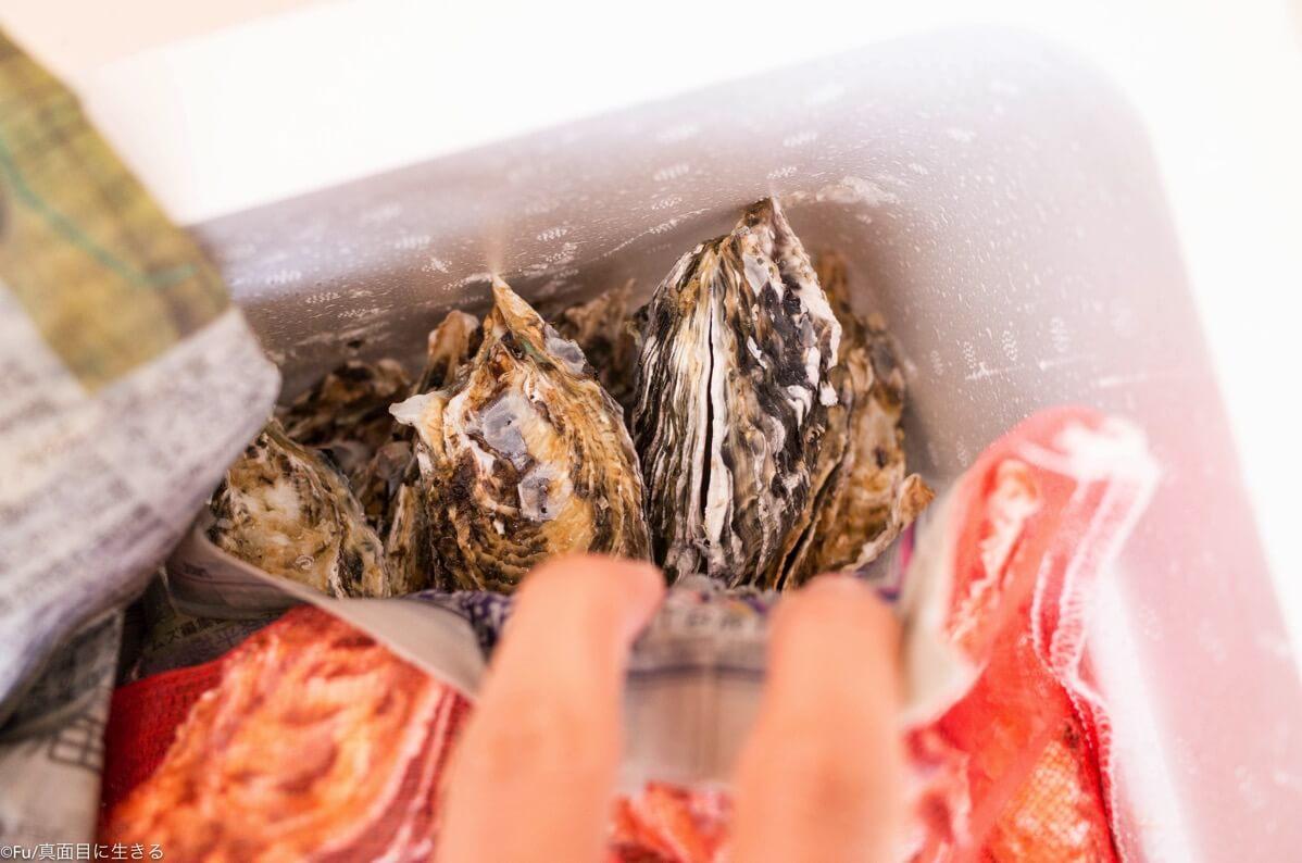 生食用の牡蠣