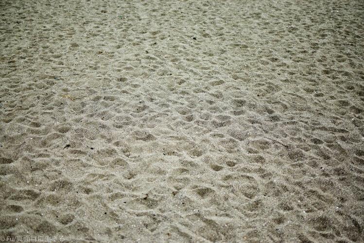 砂浜の様子