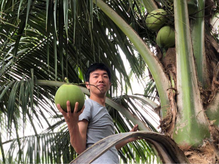 ココナッツゲット、