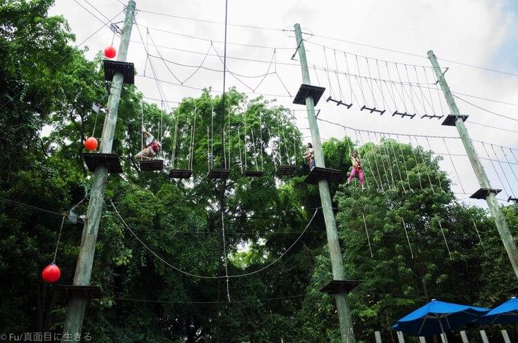 mega-climb