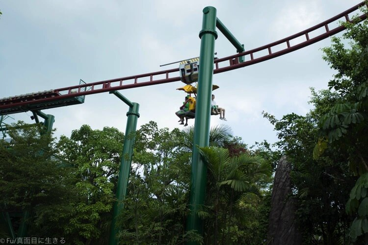 Canopy Flyer