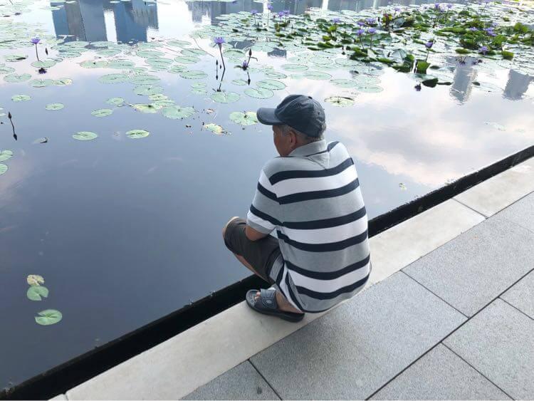 お義父さんがマリーナベイサンズ、マーライオン堪能した1日【Fu/真面目な日常】【シンガポール日記3日目】