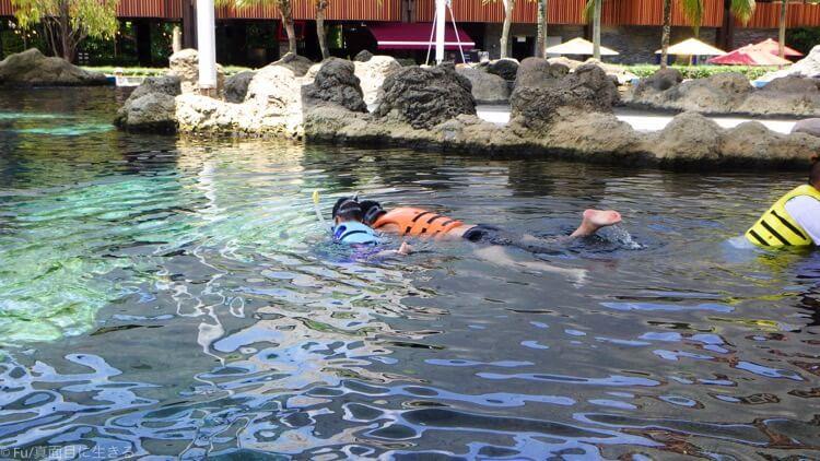 講習を終えて泳ぎだす
