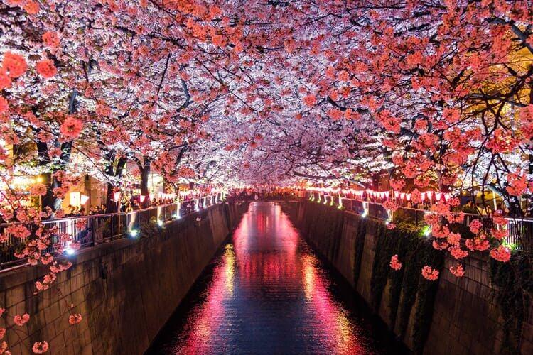 日本でのデート