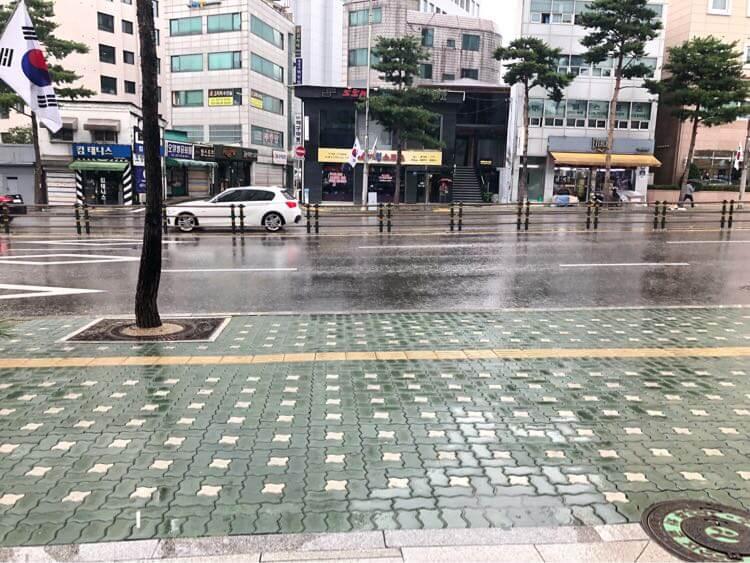 あいにくの雨