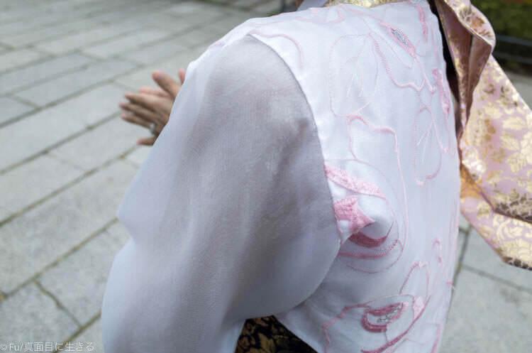 ソウル・景福宮で韓服(ハンボッ・チマチョゴリ)レンタル 薄い布