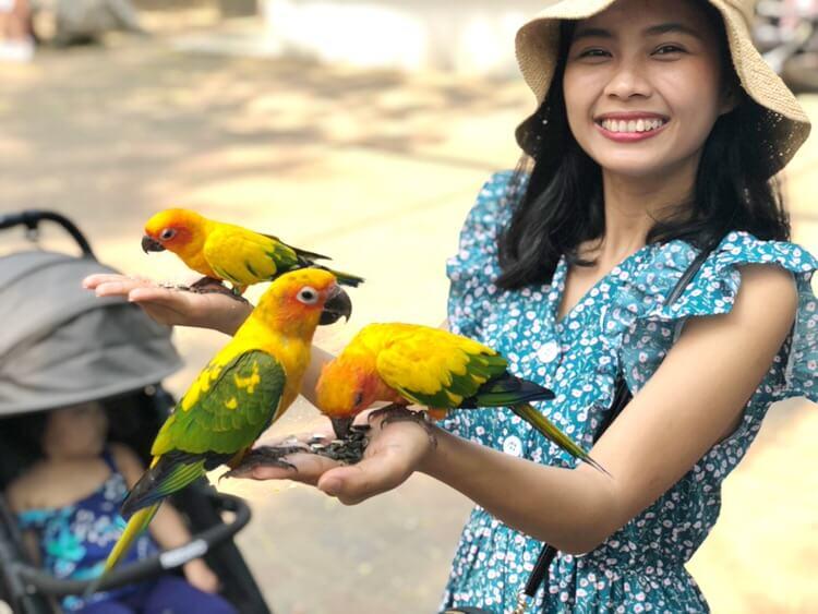 鳥のえさやり