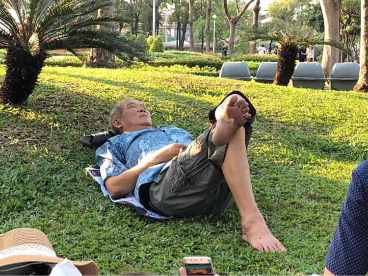 芝生で昼寝