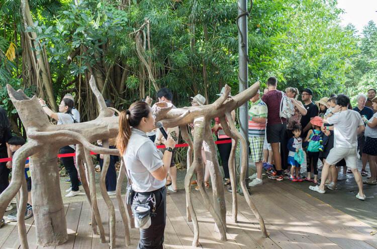 ジャングルブレックファースト 記念撮影のために並ぶ