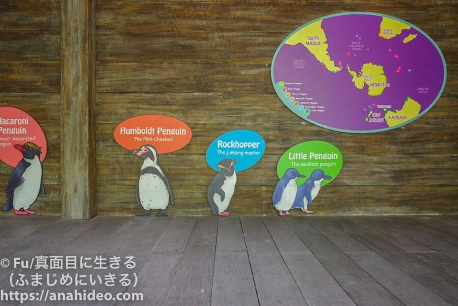 ペンギンコート
