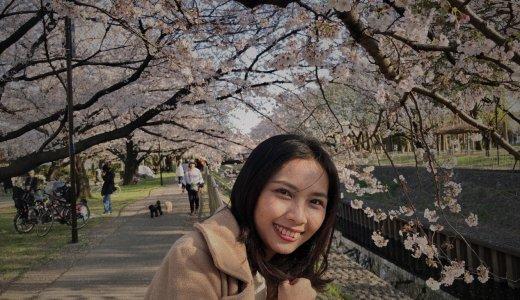 善福寺川緑地で少しだけお花見してきたり、宅配弁当を試してみた1日【Fu/真面目な日常】