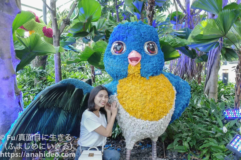 青い鳥のトピアリー