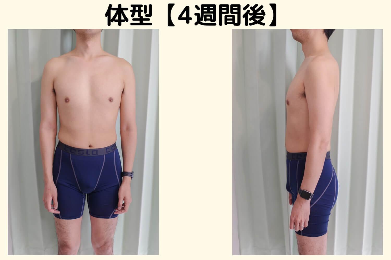 体型比較 3週間経過のコピー