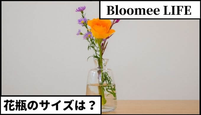 ブルーミーライフ どんなサイズの花瓶を用意すればいい?【結論】公式サイトが1番おすすめ