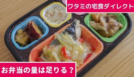 【量は足りる?少ない?】ワタミの宅食ダイレクト 宅配弁当は食べ応えが十分あり
